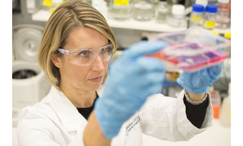 Study identifies how to improve WHO eradication strategy for skin disease