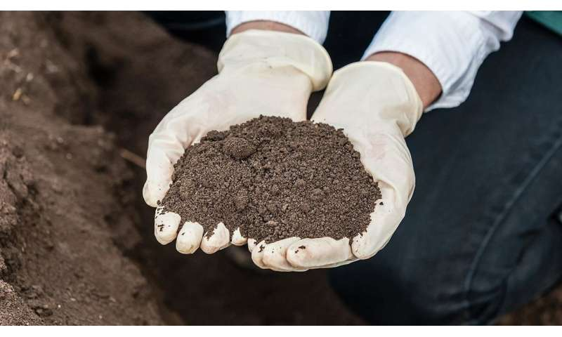 Scientists create roadmap for examining soil and using sensing technology