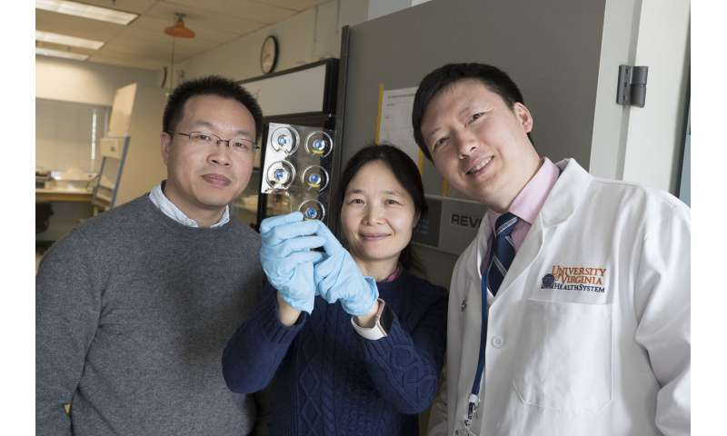 Researchers developing drug delivery patches to manage pain without addiction risk