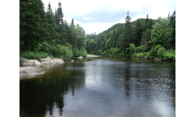 Climate change study finds New Hampshire's warmer weather will bring warmer streams