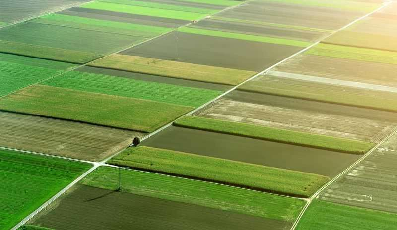 A brief history of agriculture