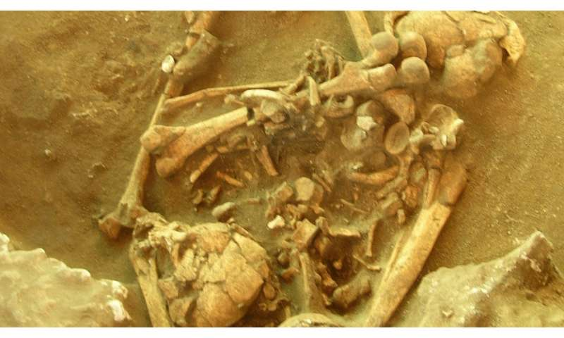 Research reveals genetic timeline of early Pacific settlers