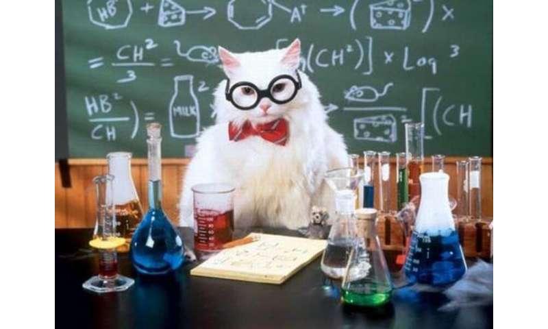 The surprising academic origins of memes