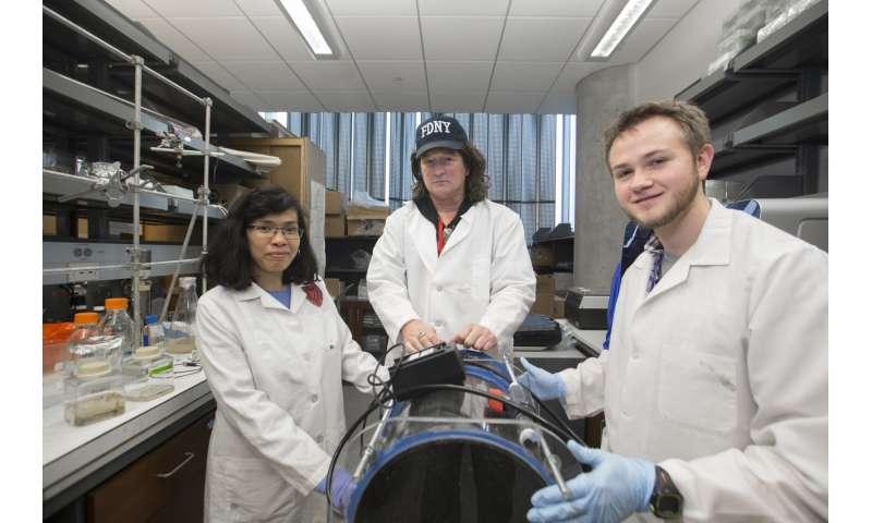 University of Cincinnati researcher receives US patent for potential COPD treatment