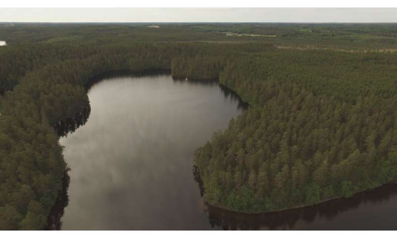 Archaeologists found traces of submerged Stone Age settlement in Southeast Finland