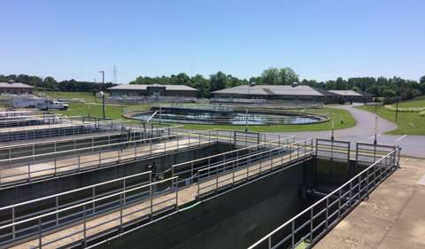 Researchers study midge fly infestation in Ohio wastewater treatment plants