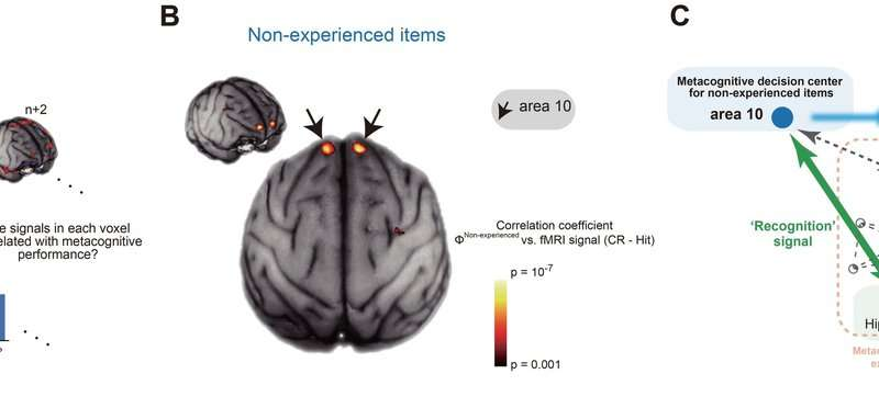 Cognitive neuroscience—the awareness of ignorance