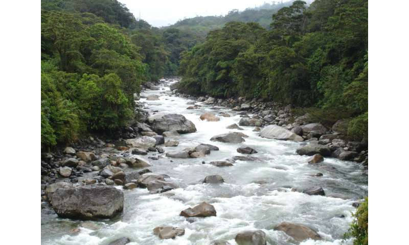 Study suggests hydroelectric dams causing greater impact on Amazon basin than thought