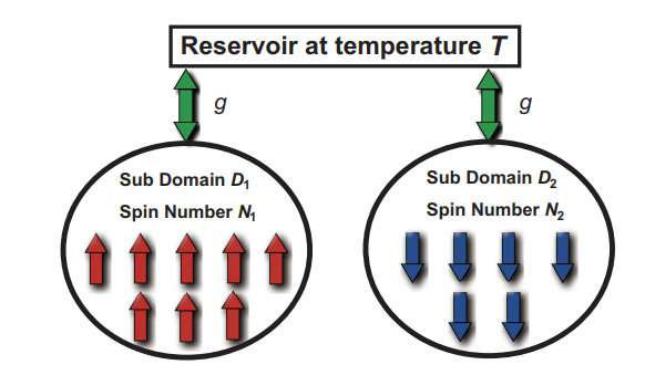 When collective spins in a double domain system relax towards a negative-temperature state