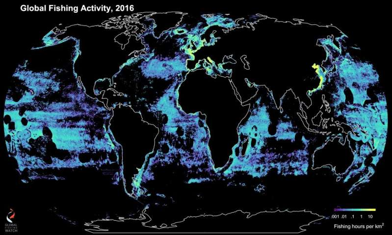 researchers collaborate to track commercial fishing worldwide in near real-time