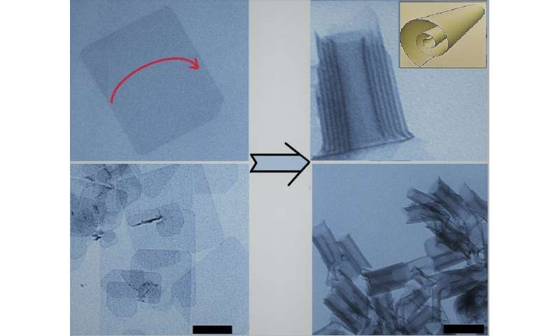 Scientists rolled 2-D cadmium telluride up into nanoscrolls