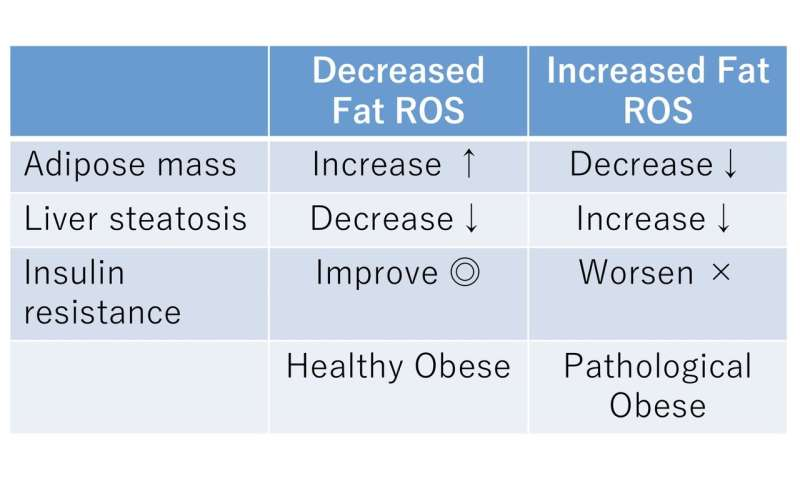 Oxidative stress makes difference between metabolically abnormal and healthy obesities
