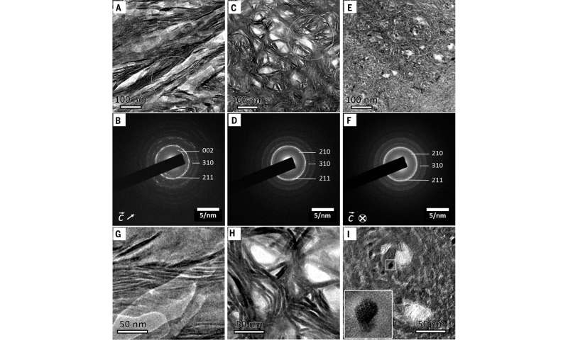 Revealing the remarkable nanostructure of human bone