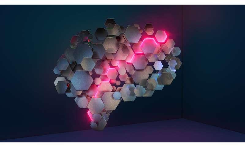 Self-navigating AI learns to take shortcuts: study