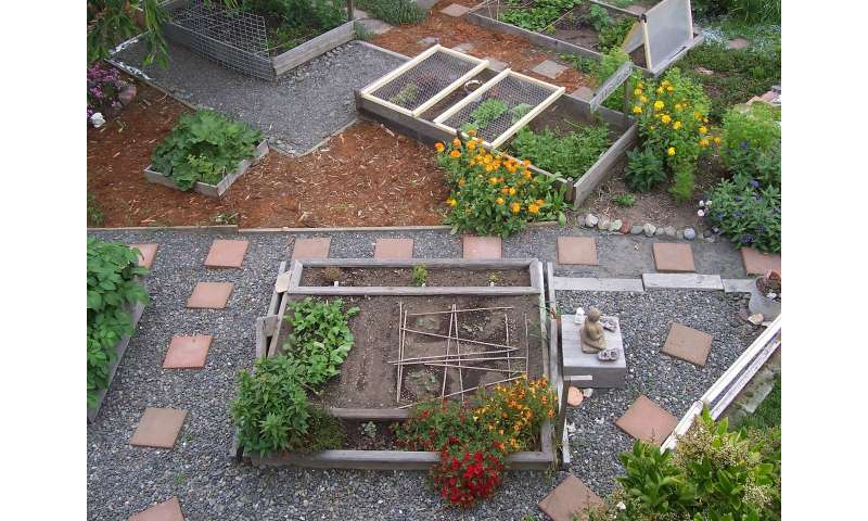 Urban agriculture—Europe's untapped potential