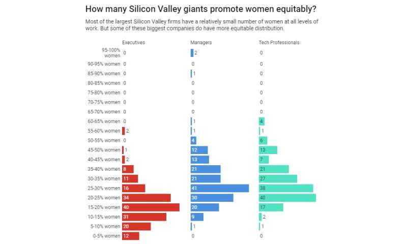 Searching for diversity in Silicon Valley tech firms – and