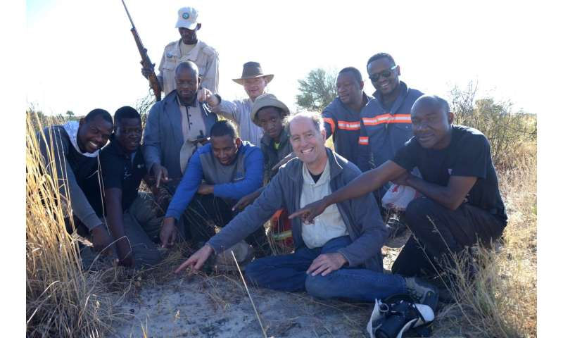 Fragment of impacting asteroid recovered in Botswana