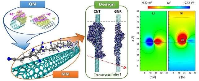 Computer simulation identifies a key principle for next-generation carbon fibers