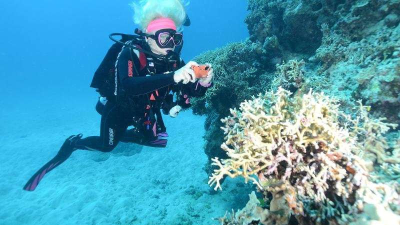 Citizen scientists dive into reef protection project