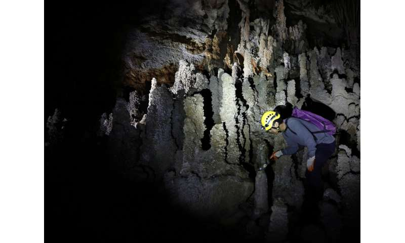 Stalagmite study offers clues about Earth's past magnetic polarity shifts