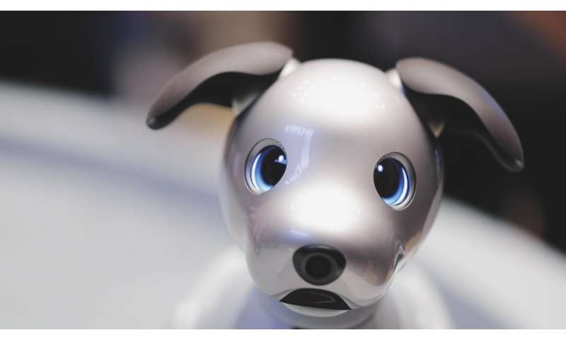 Sony's aibo robotic dog can sit, fetch and learn what its