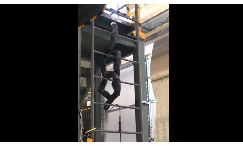 An advanced snake-robot for disaster sites climbs by coiling