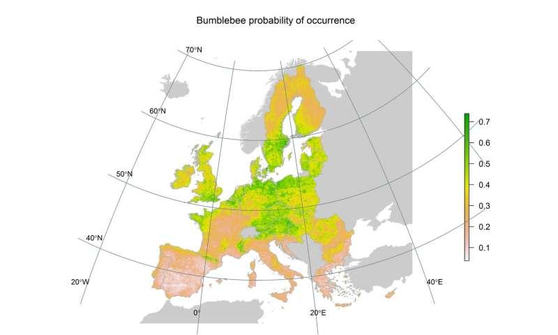 Distribución de abejorros en Europa