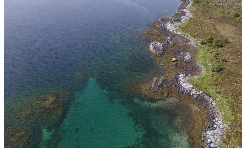 Researchers use drones to photograph seaweeds: The tidal zone from a bird's-eye view