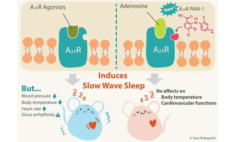 A new therapeutic avenue for treating insomnia