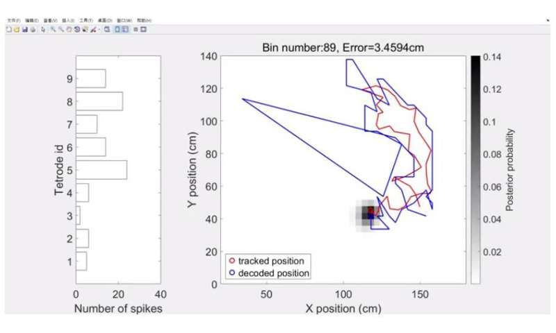Neurotechnology provides real-time readouts of where rats think they are