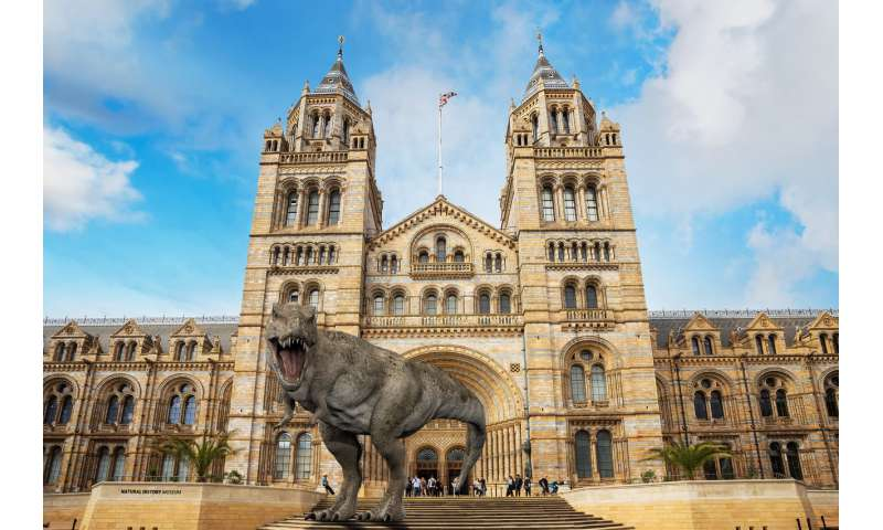 Augmented reality promises to rescue dying museums – so why don't visitors want to use it?