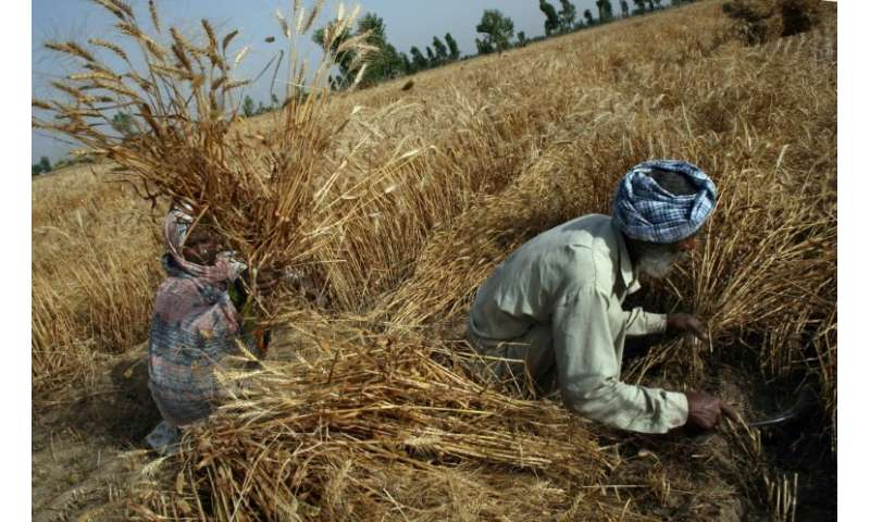 Gender inequality leaves Indian women particularly vulnerable to rising hunger sparked by extreme weather events