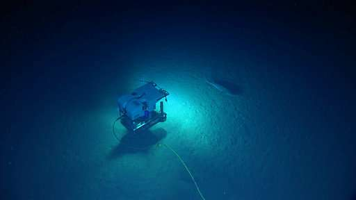 Scientists wind up deep-water probes in Caribbean waters