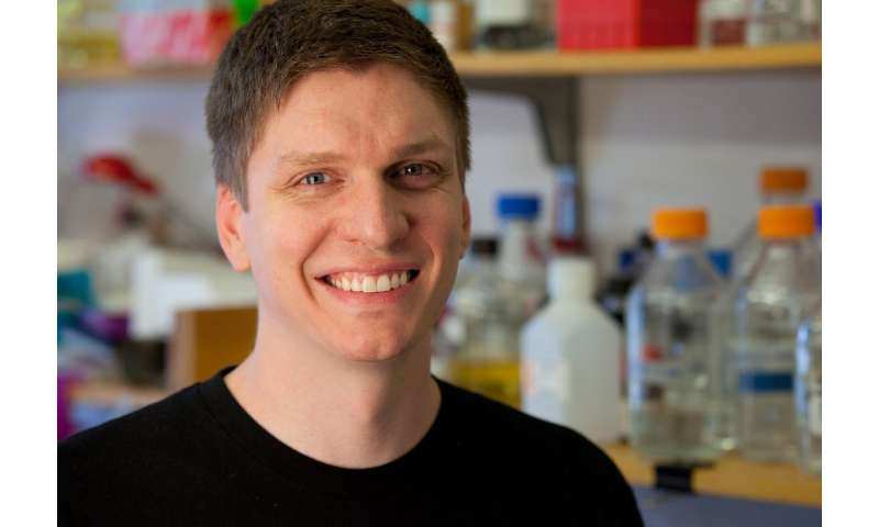 Study finds that enzymes 'partner up' to accelerate cancer, aging diseases