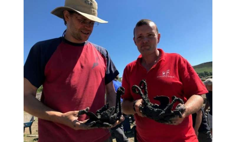 Researchers unearth remarkable horse 'shoes'