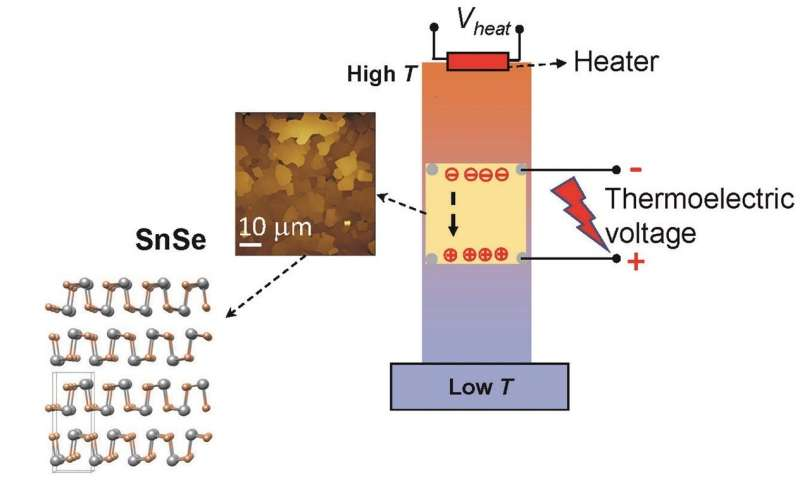 Exploring the thermoelectric properties of tin selenide nanostructures