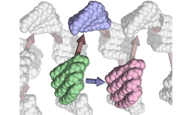 Self-assembling protein filaments designed and built from scratch