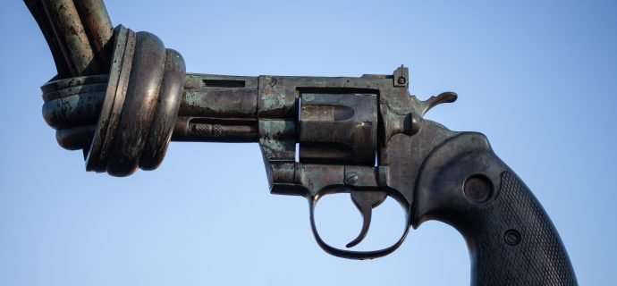 A focused intervention—the provider's role in firearm violence prevention