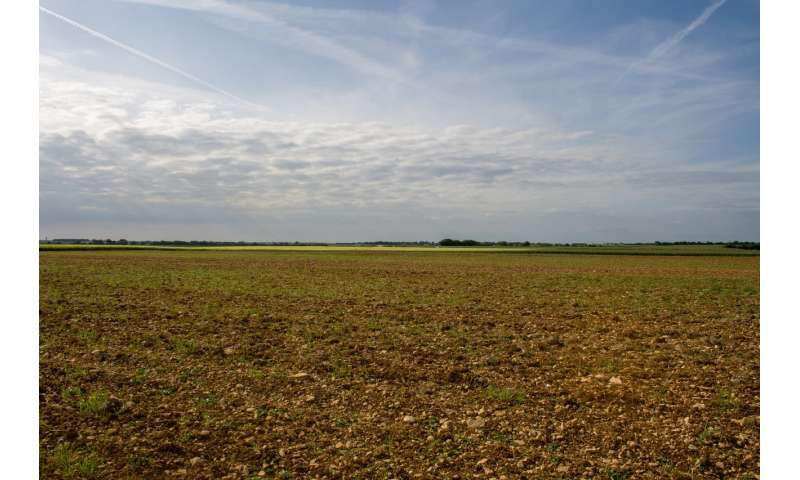 A global conflict: Agricultural production vs. biodiversity