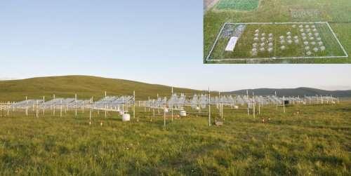 Alpine grassland productivity not sensitive to climate warming on third pole