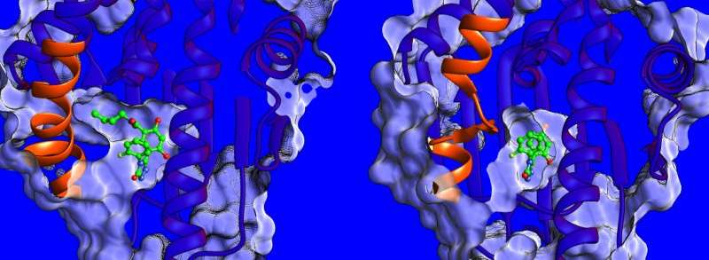 A matter of mobility: multidisciplinary paper suggests new strategy for drug discovery