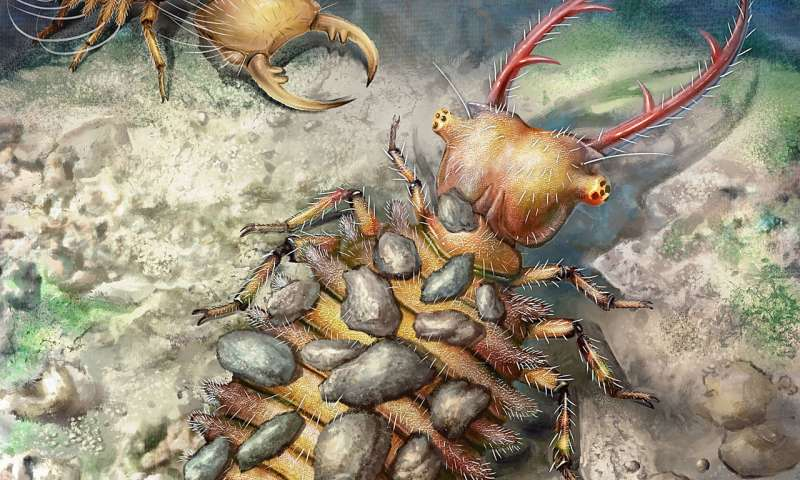 Amber unveils evolution of ancient antlions