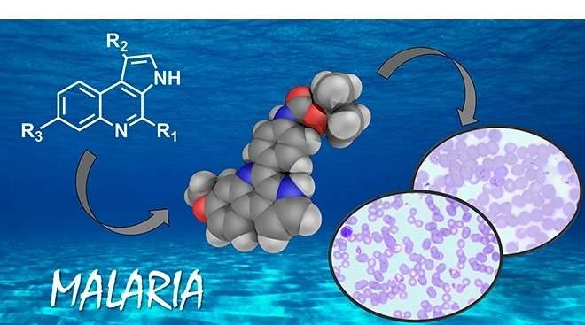 A new, highly effective and selective molecule is developed to fight malaria
