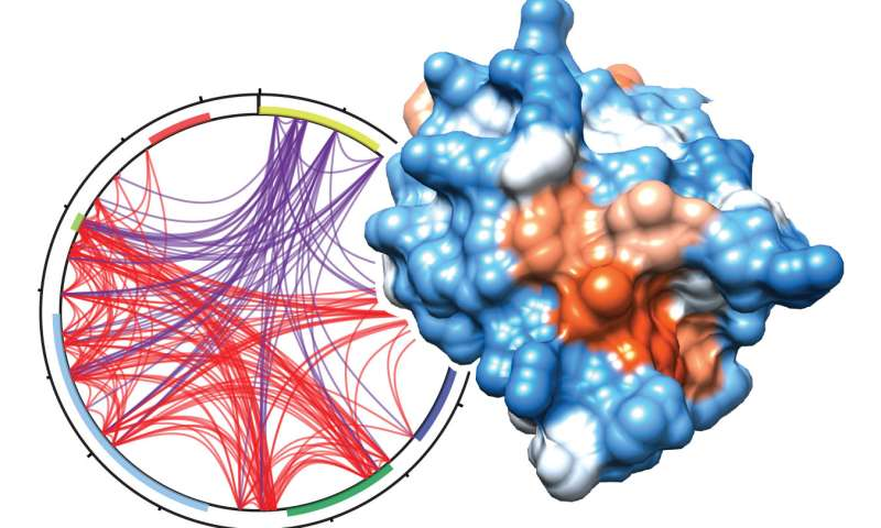 A new piece to the puzzle sheds light on how UHRF1 regulates gene activity