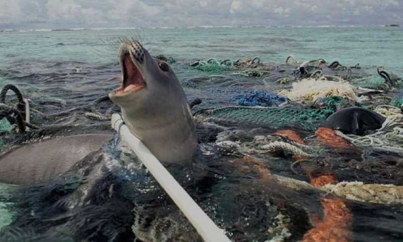 "An international plastics treaty could avert a ""Silent Spring"" for the seas"