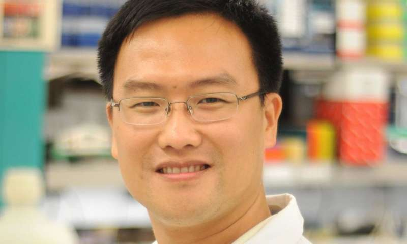 A novel strategy to potentially reduce breast cancer bone metastasis