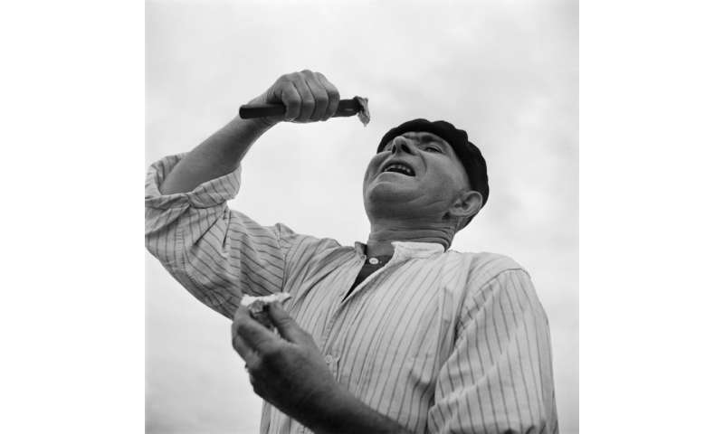 An oyster farmer in the Arcachon basin of south-west France readies to swallow an oyster in 1946