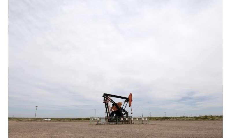 A pumpjack belonging to Argentinian oil company YPF is seen in Vaca Muerta Shale oil reservoir, in the Patagonian province of Ne