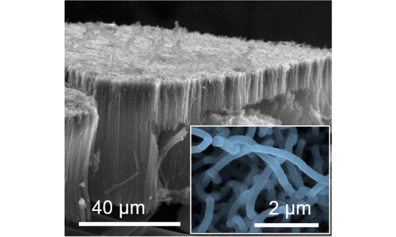 As future batteries, hybrid supercapacitors are super-charged