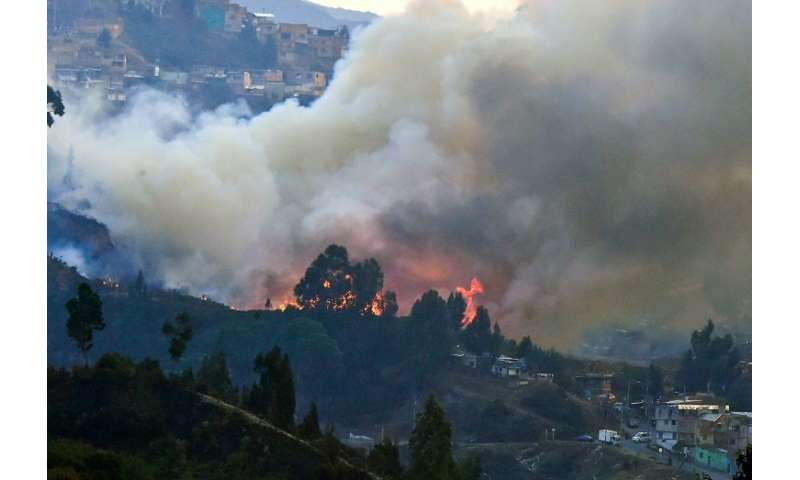 A view of a forest fire in Bogota underscores the dangers posed by land degradation
